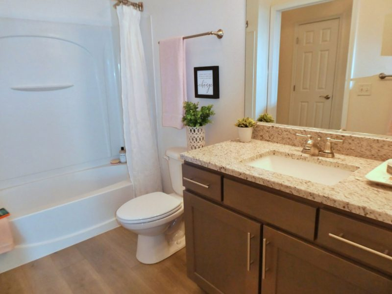TGM Ridge Apartments Bathroom 2