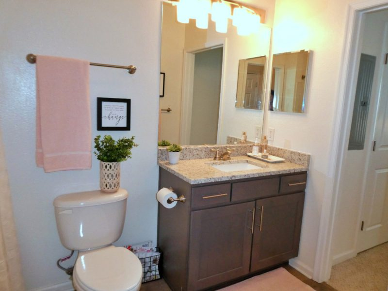 TGM Ridge Apartments Bathroom